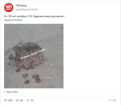 ВОмске дорожную яму заделали картошкой