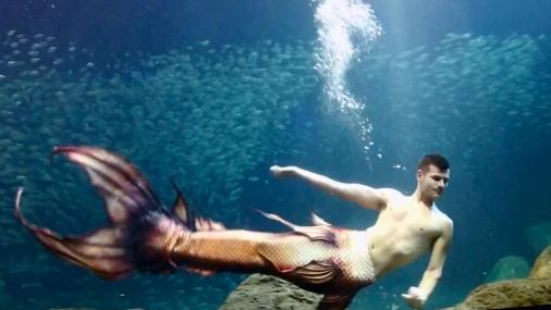 Секс настоящей русалки и человека фото 714-52