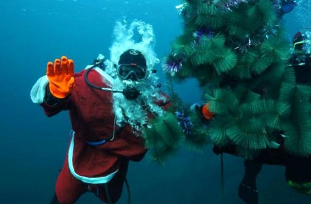 Хоровод вокруг подводной елочки (Россия)
