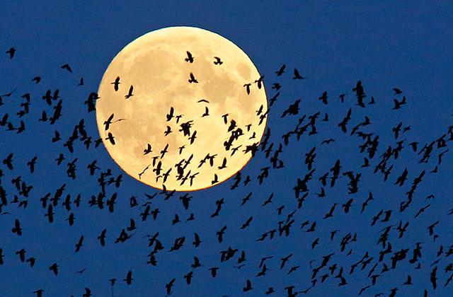 Фазы Луны влияют на количество осадков на Земле