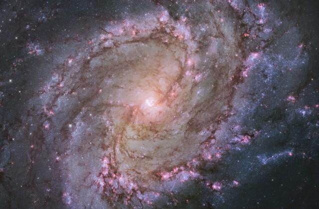Ученые назвали взрыв сверхновых первопричиной  появления рака