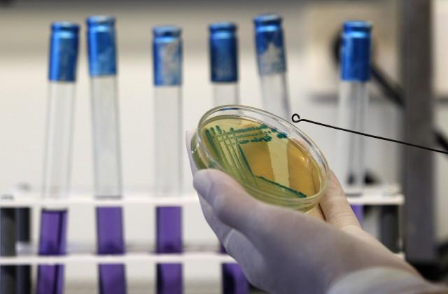 Ученые раскрыли загадку небезопасной формы рака