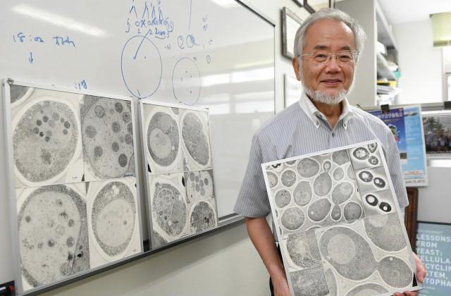 Японский ученый получил Нобелевскую премию помедицине