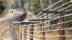 СМИ сообщили о задержании белорусского силовика на границе Литвы