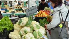 Фермерам компенсируют капусту и брокколи