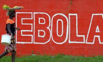 Спецмиссия ООН планирует достичь прогресса в борьбе с Эболой за 60 дней