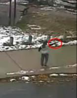 В США убийство подростка полицейским попало на видео