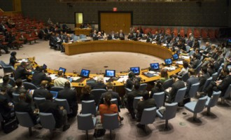 В ООН 43 страны призвали Россию «надавить» на сепаратистов