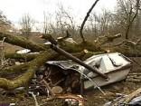 Придавленный деревом мужчина 8 часов ждал помощи в Риге