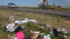 Нидерланды завершили расследование о крушении «Боинга» под Донецком