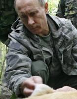 В Хабаровском крае застрелили тигренка Путина