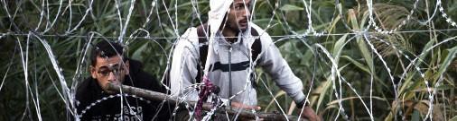 Экс-депутат Сейма: беженцы приедут для размножения и торговли наркотиками
