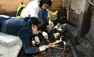 На ранчо в Мексике найдено свыше 30 тысяч человеческих останков