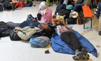 Латвия поможет беженцам в Европе одеялами и постельным бельем