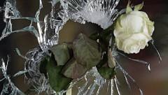 СМИ: парижские террористы купили оружие через интернет