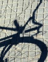 Полиция поймала велокрада-алкоголика