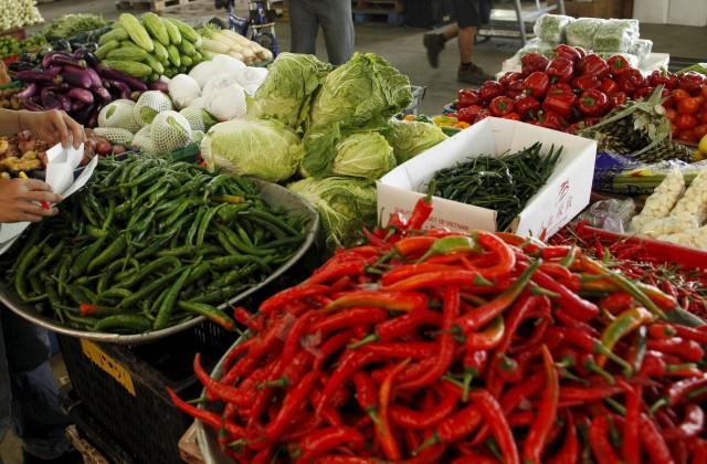 Запрет импорта турецкой сельхозпродукции невызовет дефицита на российском рынке — Россельхознадзор