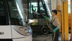 Граффити, блохи и запах бомжей... А вы знаете, как моют рижские трамваи?