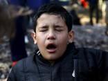 В Литве сирийских подростков забросали камнями