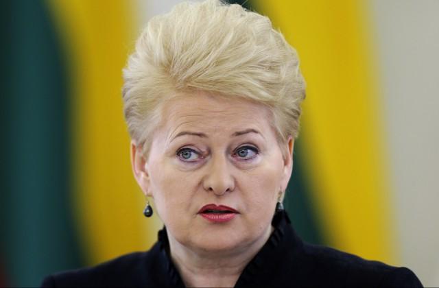 Грибаускайте: формальная процедура продления санкций против Российской Федерации запущена