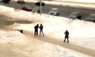 Такое увидишь не часто: собака сбила пешехода... духовкой!