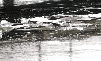 Благодаря очевидцу, полиция спасла провалившуюся под лед женщину