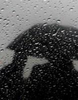 В понедельник ожидается дождь, а в отдельных частях страны - снег