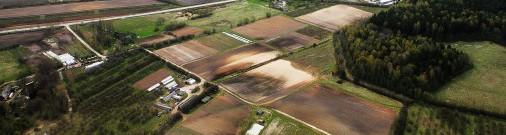 Половина сельскохозяйственной земли Латвии принадлежит иностранцам