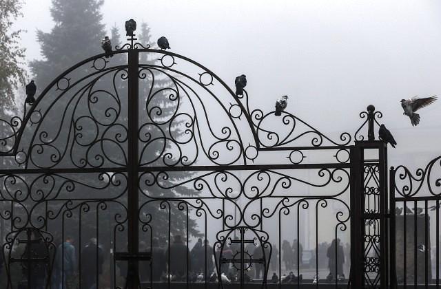 ВоФранции вандалы открыли могилу актрисы Роми Шнайдер— невесты Алена Делона