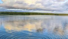 В латвийских водоемах активизировались паразиты. Как избежать последствий?
