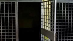 Задержанный в Пурвциемсе пьяный пытался разнести полицейский участок