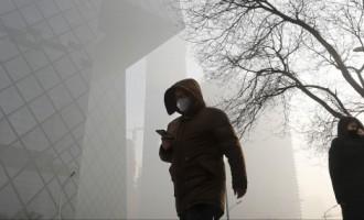 В Китае из-за смога планируется строить «лесные города»