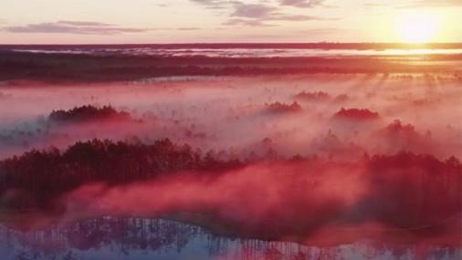 Невероятное видео: Волшебство на Кемерских болотах