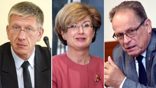 Сейм утвердил состав комиссии по расследованию «дела олигархов»